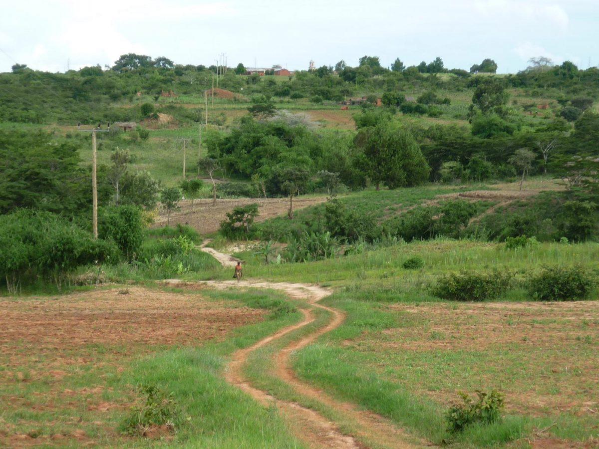 Der Hügel aus dem Emmaberg liegt