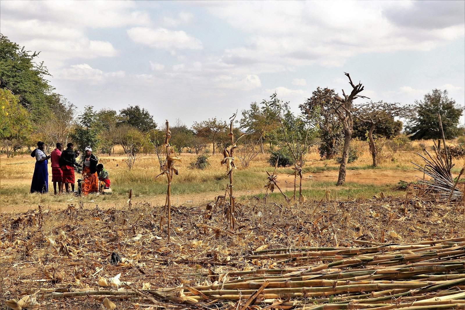 Ilembula Secondary - SchuPa Tansania