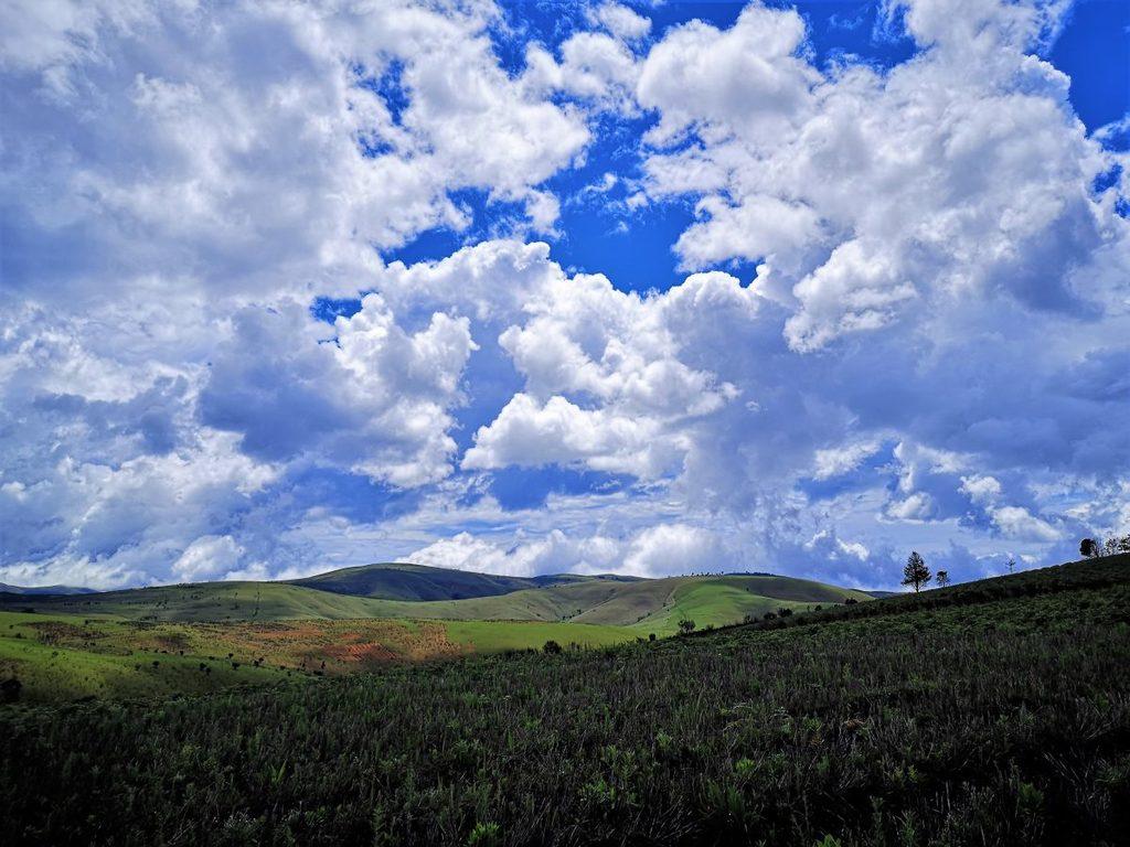 Aufforstungsgebiet bei Makangarawe/ Bezirk Makete/Region Njombe